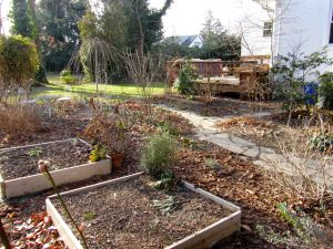 Garden beds at 1 Drexel Road - wait patiently for spring to come...
