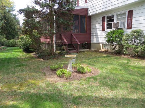 25 backyard
