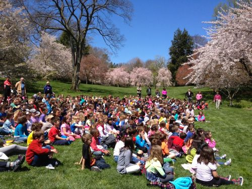 The students sang songs and soaked in the sunshine!