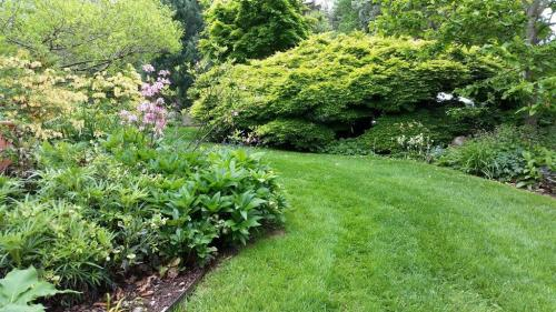 19 Garden Path