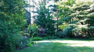 22 Backyard