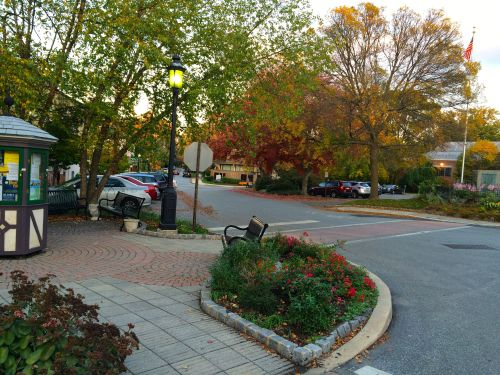 A picture of downtown Swarthmore in fall...