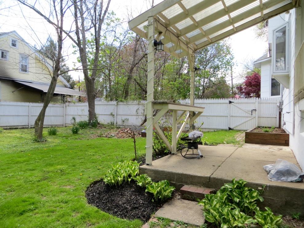 11 backyard