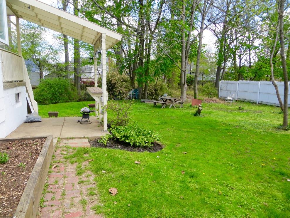 13 backyard