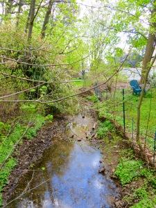 13 creek