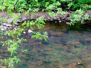 39 the creek