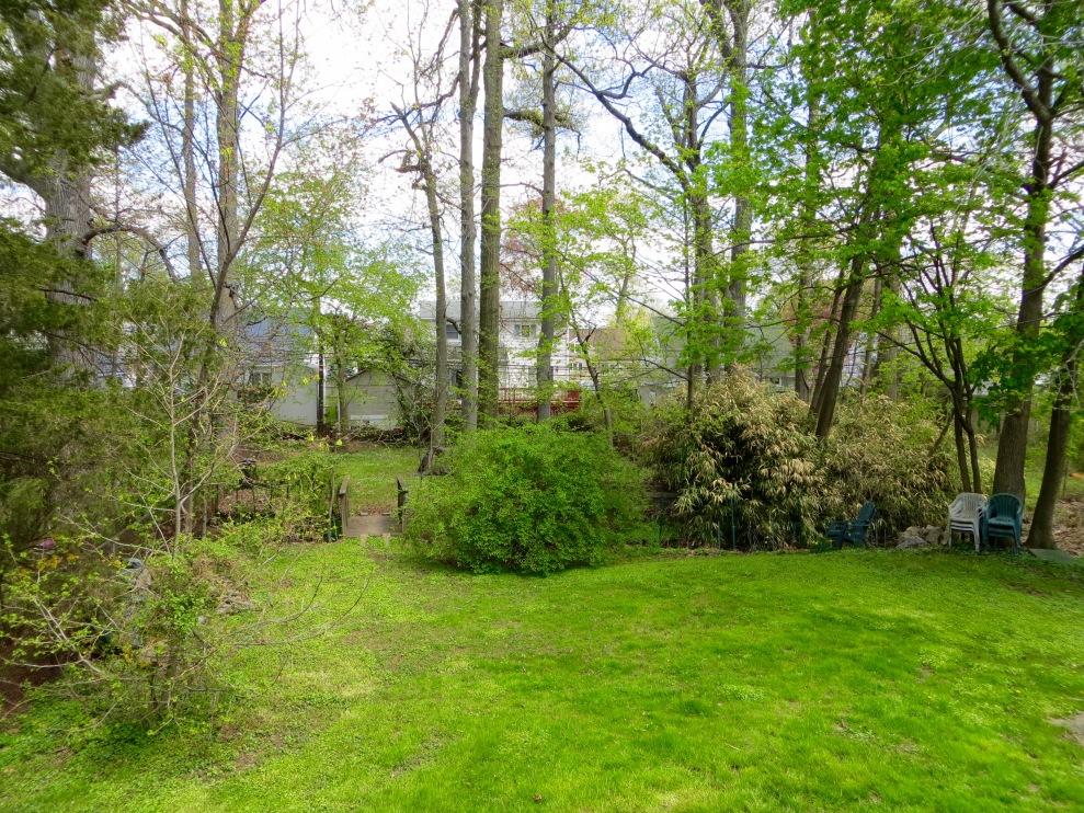 9 backyard