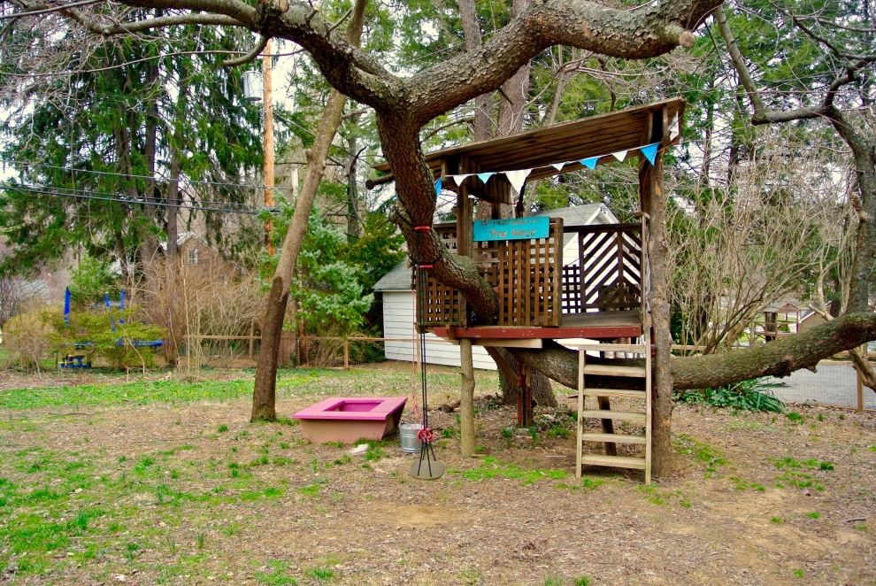25 tree fort
