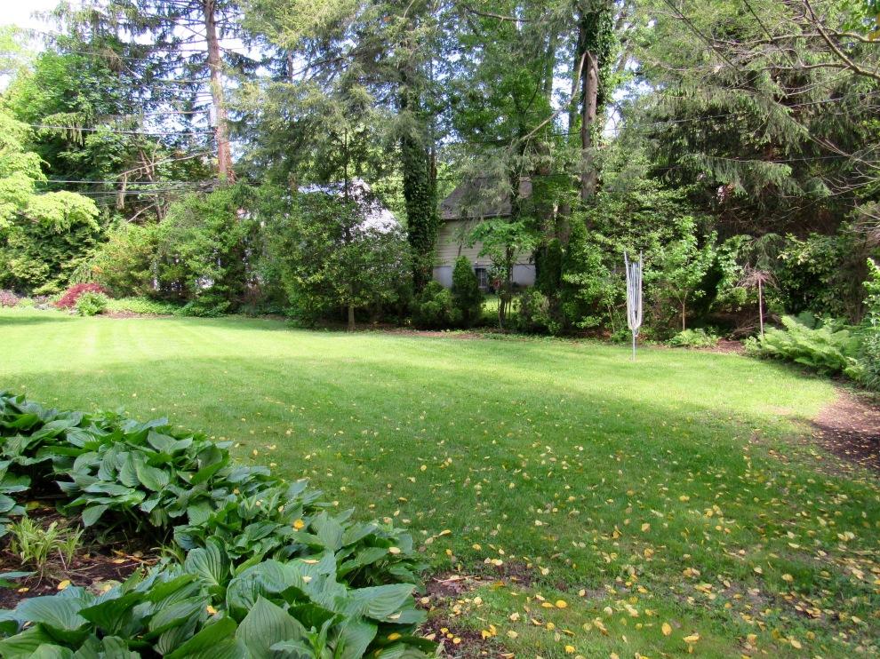 19 backyard