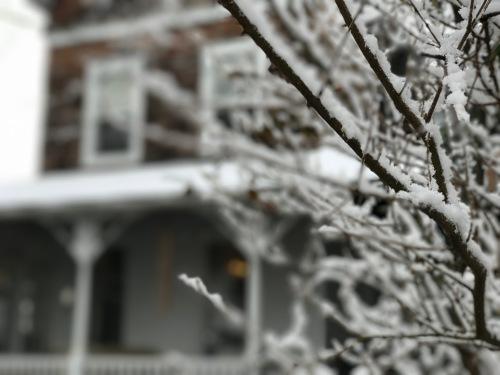 3. April snow
