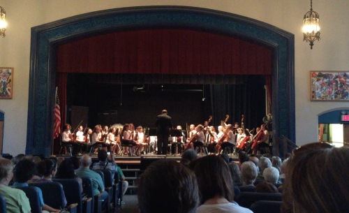 4. SRS Orchestra Performance