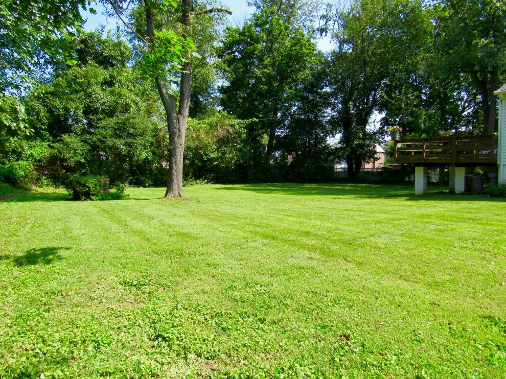 17 backyard
