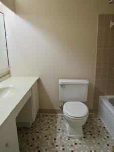10. Hall bath