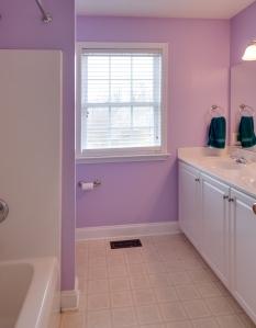 20.5 hall bath