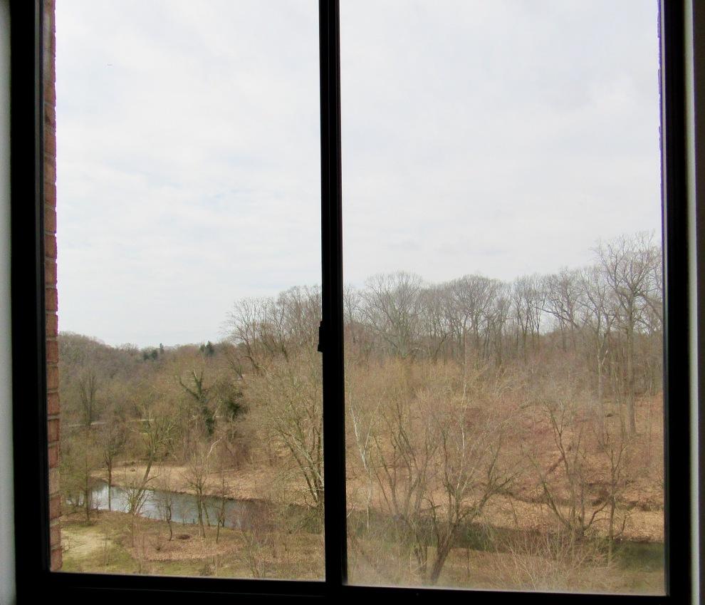 11. Master Bedroom view